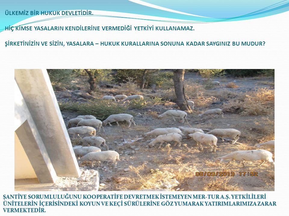 Yönetim Kurulunun 12.03.2015 tarihinde Dikilideki tatil köyü inşaatlarımızda yapmış olduğu incelemeler ile ilgili Görüntüler.