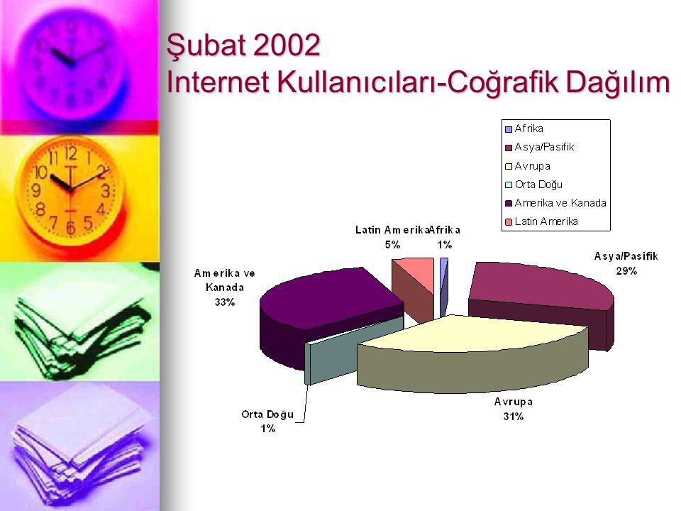 Şubat 2002 Internet Kullanıcıları-Coğrafik Dağılım