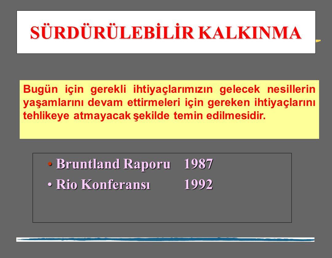 Bruntland Raporu 1987 Bruntland Raporu 1987 Rio Konferansı1992 Rio Konferansı1992 Bugün için gerekli ihtiyaçlarımızın gelecek nesillerin yaşamlarını d
