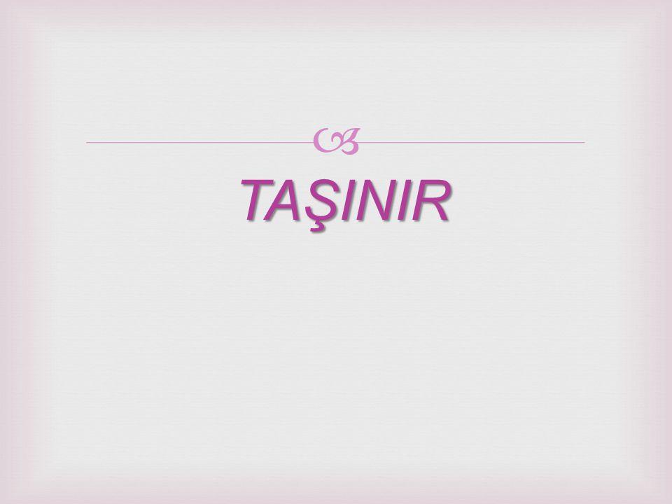 TAŞINIR
