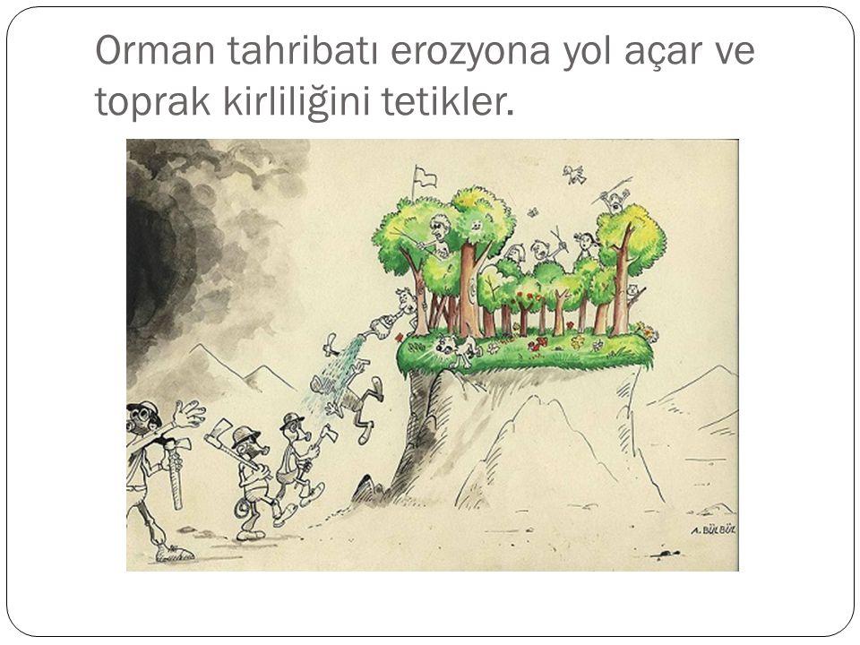 Orman tahribatı erozyona yol açar ve toprak kirliliğini tetikler.