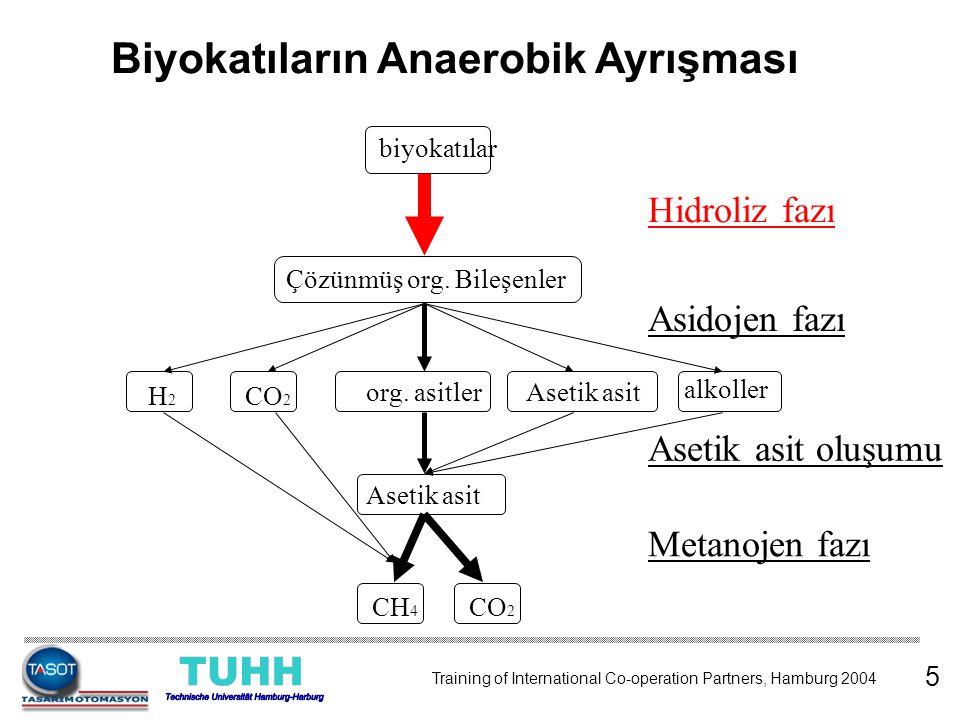 Biyokatıların Anaerobik Ayrışması biyokatılar Çözünmüş org. Bileşenler H2H2 CO 2 org. asitlerAsetik asit alkoller Asetik asit CH 4 CO 2 Hidroliz fazı