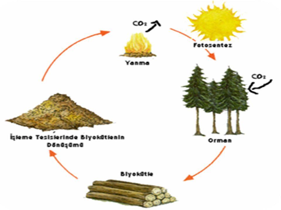 Biyokütle enerjisinin Avantajları Fosil yakıt kaynakları kullanılarak yapılan enerji üretiminin çevreye zarar verdiği bilinmektedir.
