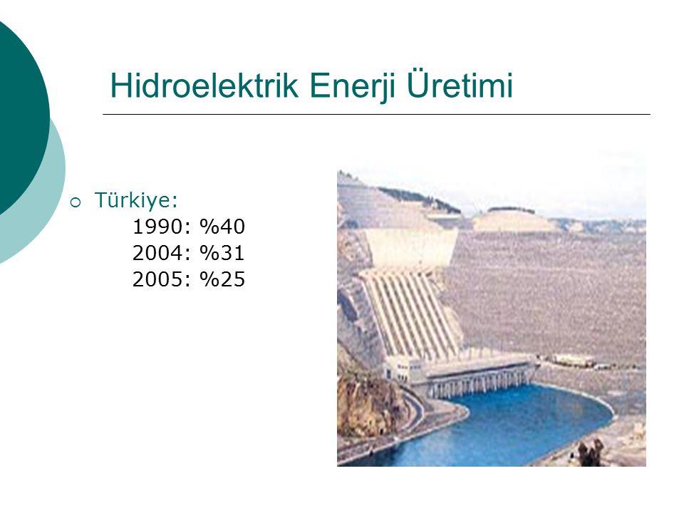 Hidroelektrik Enerji Üretimi  Türkiye: 1990: %40 2004: %31 2005: %25