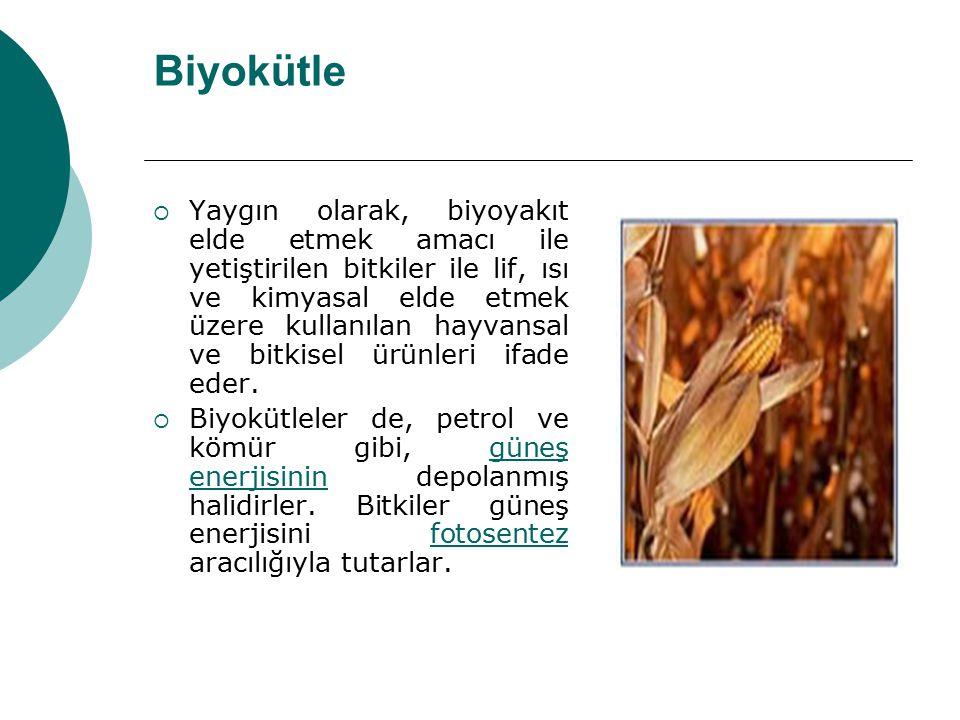 Biyokütle  Yaygın olarak, biyoyakıt elde etmek amacı ile yetiştirilen bitkiler ile lif, ısı ve kimyasal elde etmek üzere kullanılan hayvansal ve bitk