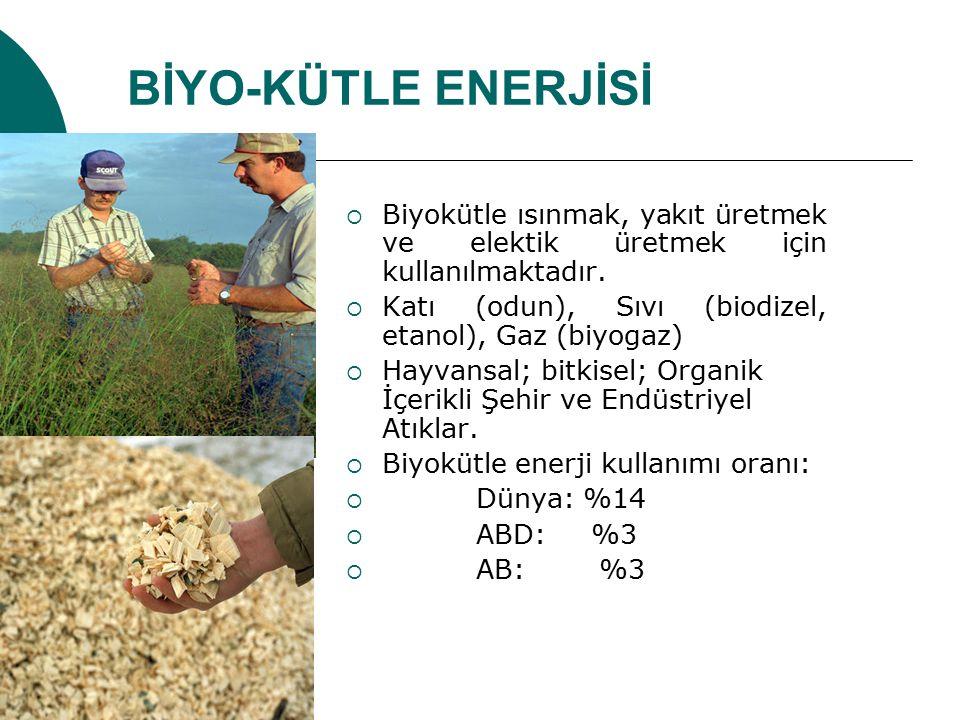 BİYO-KÜTLE ENERJİSİ  Biyokütle ısınmak, yakıt üretmek ve elektik üretmek için kullanılmaktadır.  Katı (odun), Sıvı (biodizel, etanol), Gaz (biyogaz)