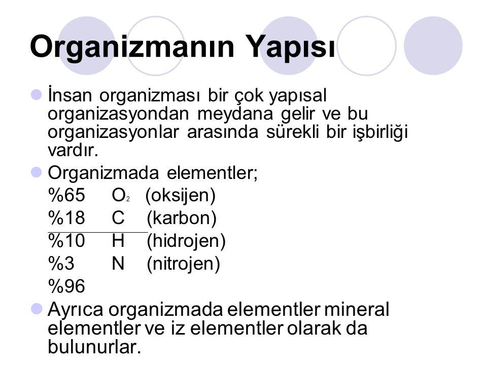 Organizmanın Yapısı İnsan organizması bir çok yapısal organizasyondan meydana gelir ve bu organizasyonlar arasında sürekli bir işbirliği vardır. Organ