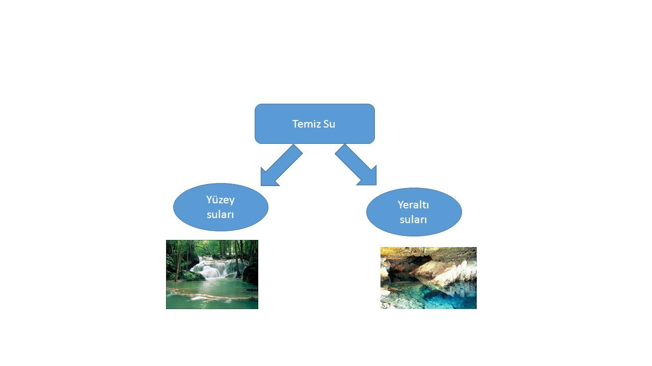 Temiz Su Yüzey suları Yeraltı suları