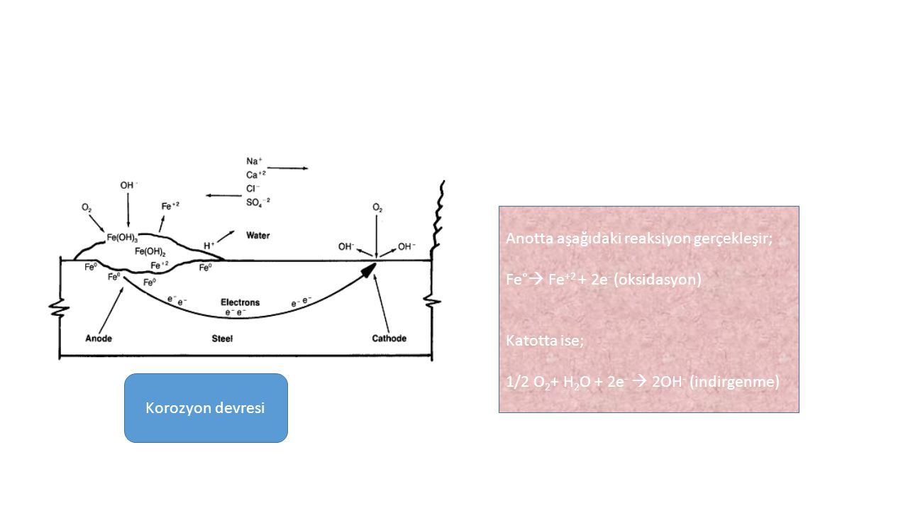 Korozyon devresi Anotta aşağıdaki reaksiyon gerçekleşir; Fe°  Fe +2 + 2e - (oksidasyon) Katotta ise; 1/2 O 2 + H 2 O + 2e -  2OH - (indirgenme)