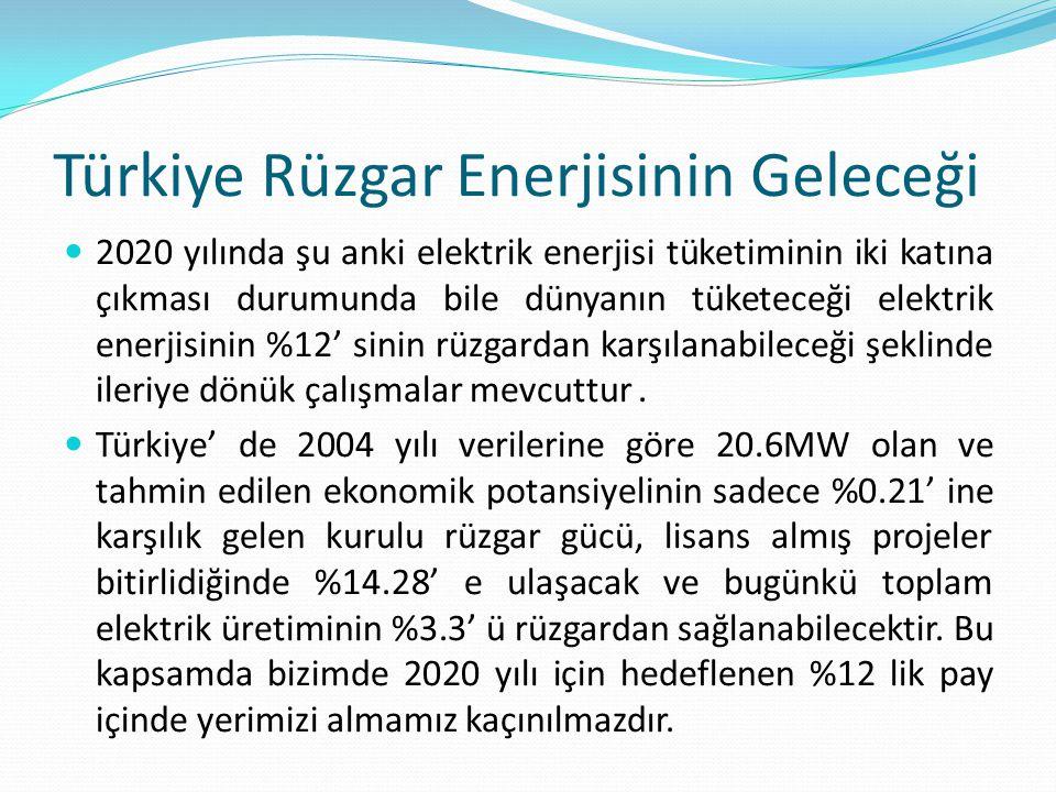 Türkiye Rüzgar Enerjisinin Geleceği 2020 yılında şu anki elektrik enerjisi tüketiminin iki katına çıkması durumunda bile dünyanın tüketeceği elektrik enerjisinin %12' sinin rüzgardan karşılanabileceği şeklinde ileriye dönük çalışmalar mevcuttur.