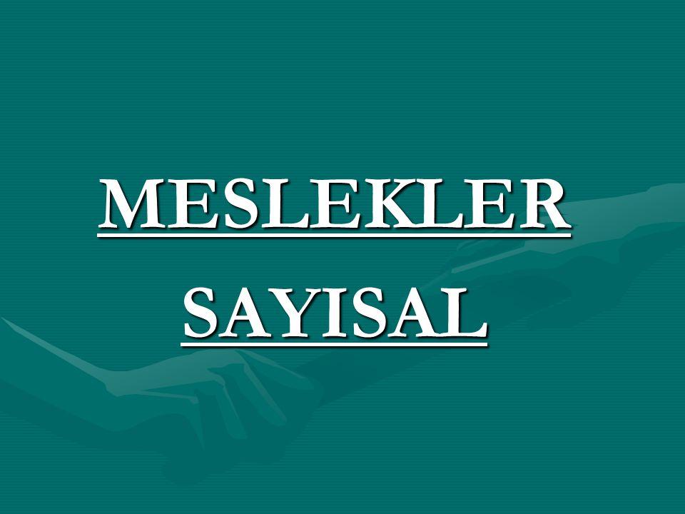 MESLEKLERSAYISAL