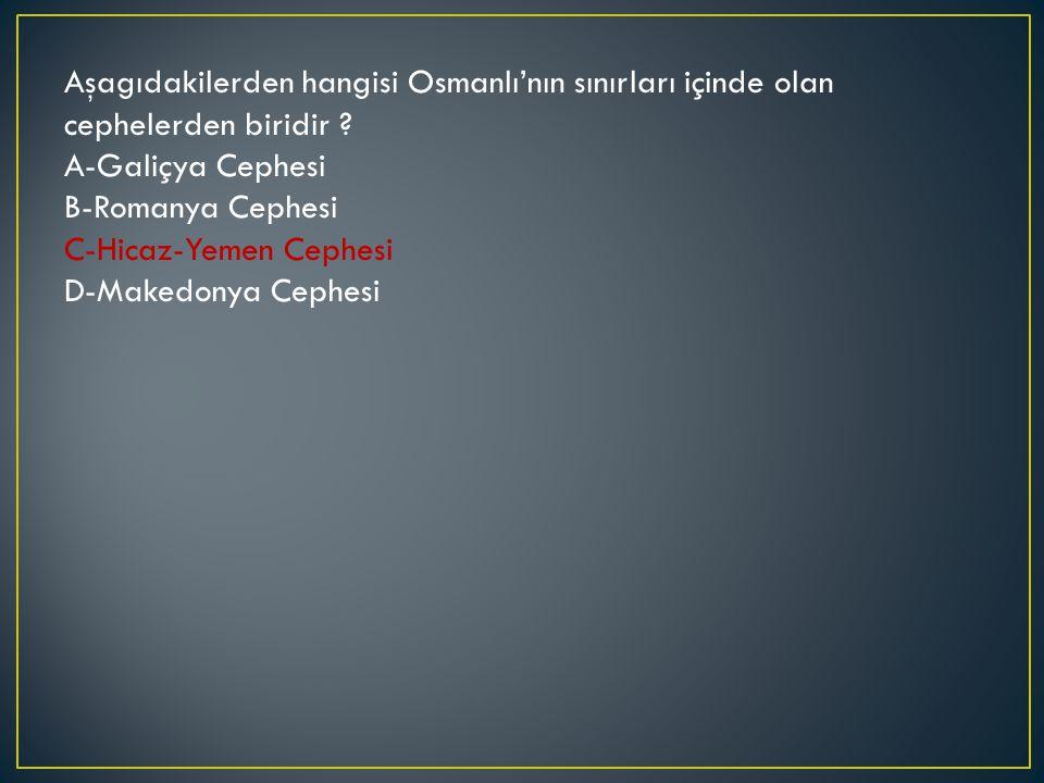 Aşagıdakilerden hangisi Osmanlı'nın sınırları içinde olan cephelerden biridir .