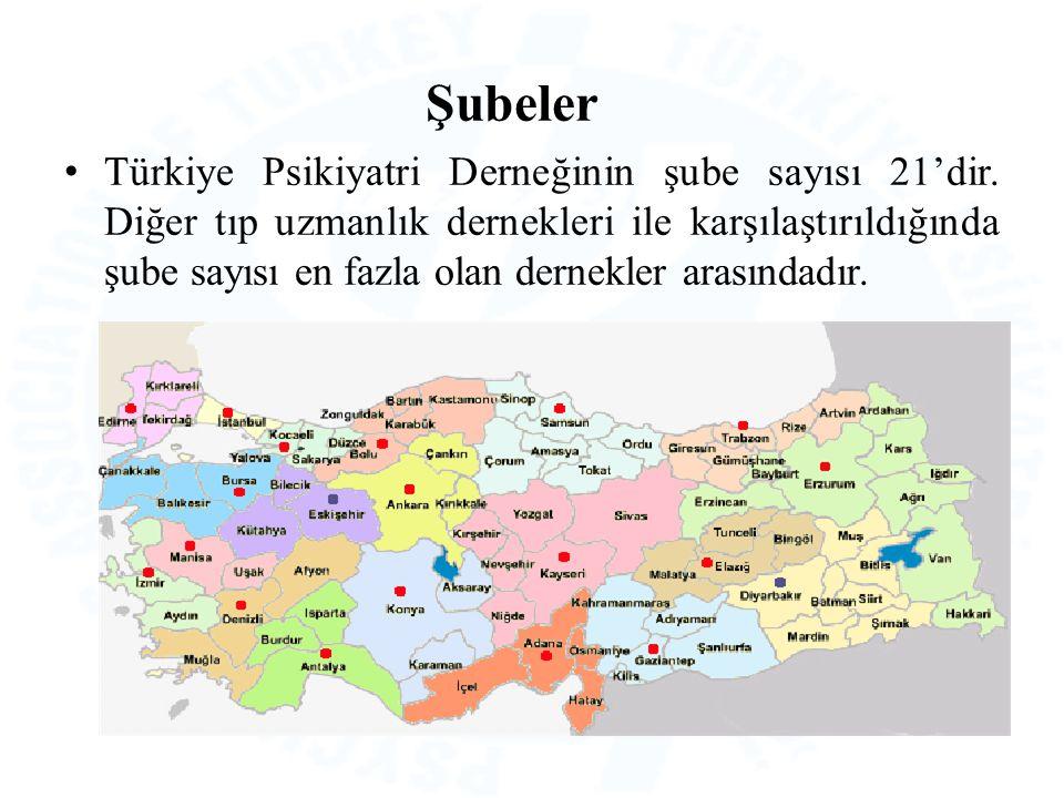 Şubeler Türkiye Psikiyatri Derneğinin şube sayısı 21'dir. Diğer tıp uzmanlık dernekleri ile karşılaştırıldığında şube sayısı en fazla olan dernekler a
