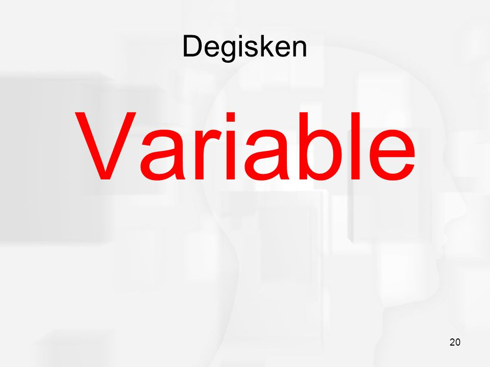 Degisken Variable 20