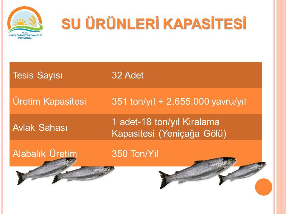 SU ÜRÜNLERİ KAPASİTESİ Tesis Sayısı32 Adet Üretim Kapasitesi351 ton/yıl + 2.655.000 yavru/yıl Avlak Sahası 1 adet-18 ton/yıl Kiralama Kapasitesi (Yeniçağa Gölü) Alabalık Üretim350 Ton/Yıl