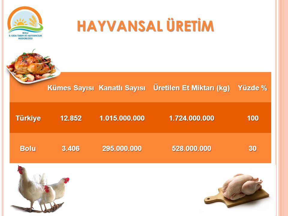 Kümes Sayısı Kanatlı Sayısı Üretilen Et Miktarı (kg) Yüzde % Türkiye12.8521.015.000.0001.724.000.000100 Bolu3.406295.000.000528.000.00030