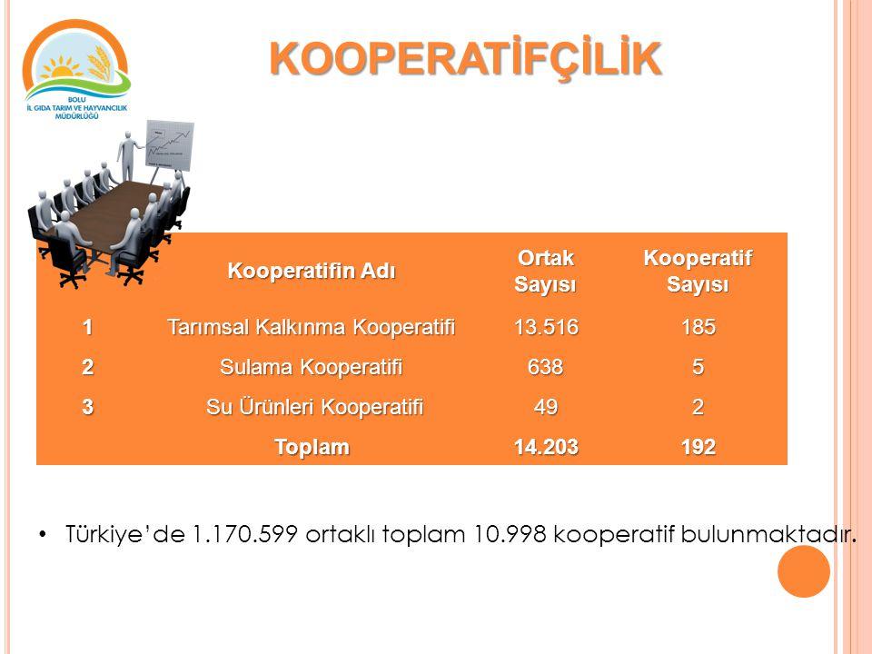 KOOPERATİFÇİLİK Türkiye'de 1.170.599 ortaklı toplam 10.998 kooperatif bulunmaktadır.