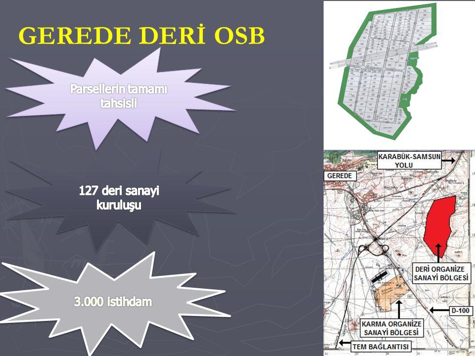 GEREDE DERİ OSB