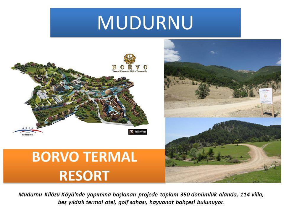 BORVO TERMAL RESORT Mudurnu Kilözü Köyü'nde yapımına başlanan projede toplam 350 dönümlük alanda, 114 villa, beş yıldızlı termal otel, golf sahası, hayvanat bahçesi bulunuyor.