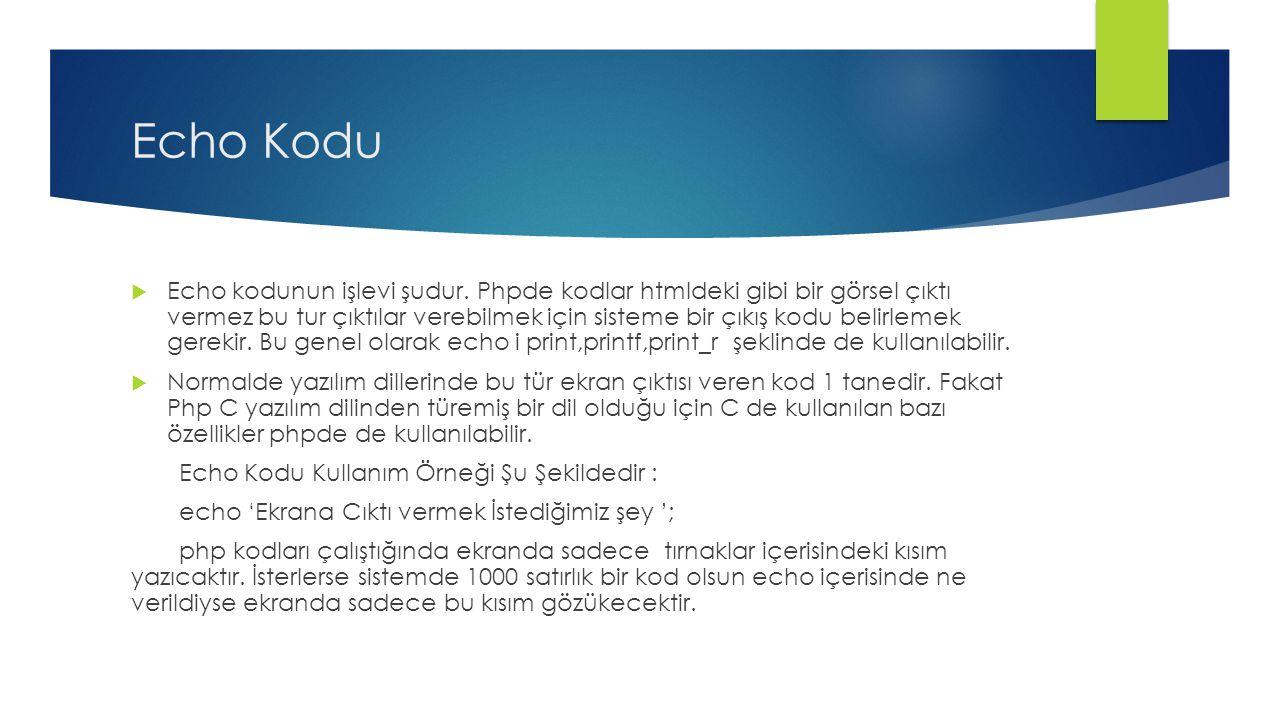 Echo Kodu  Echo kodunun işlevi şudur.