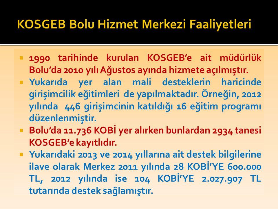  1990 tarihinde kurulan KOSGEB'e ait müdürlük Bolu'da 2010 yılı Ağustos ayında hizmete açılmıştır.  Yukarıda yer alan mali desteklerin haricinde gir