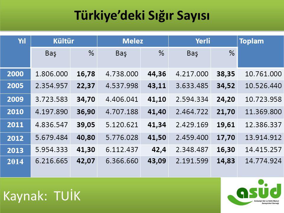 Türkiye'de Sığır Sayısı Kaynak: TÜİK YılKültürMelezYerliToplam Baş% % % 20001.806.00016,784.738.00044,364.217.00038,3510.761.000 20052.354.95722,374.5