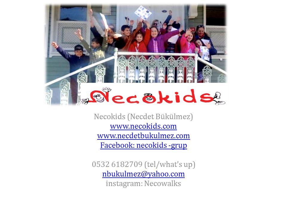 Necokids Önerilerinize açığım. Necokids (Necdet Bükülmez) www.necokids.com www.necdetbukulmez.com Facebook: necokids -grup 0532 6182709 (tel/what's up