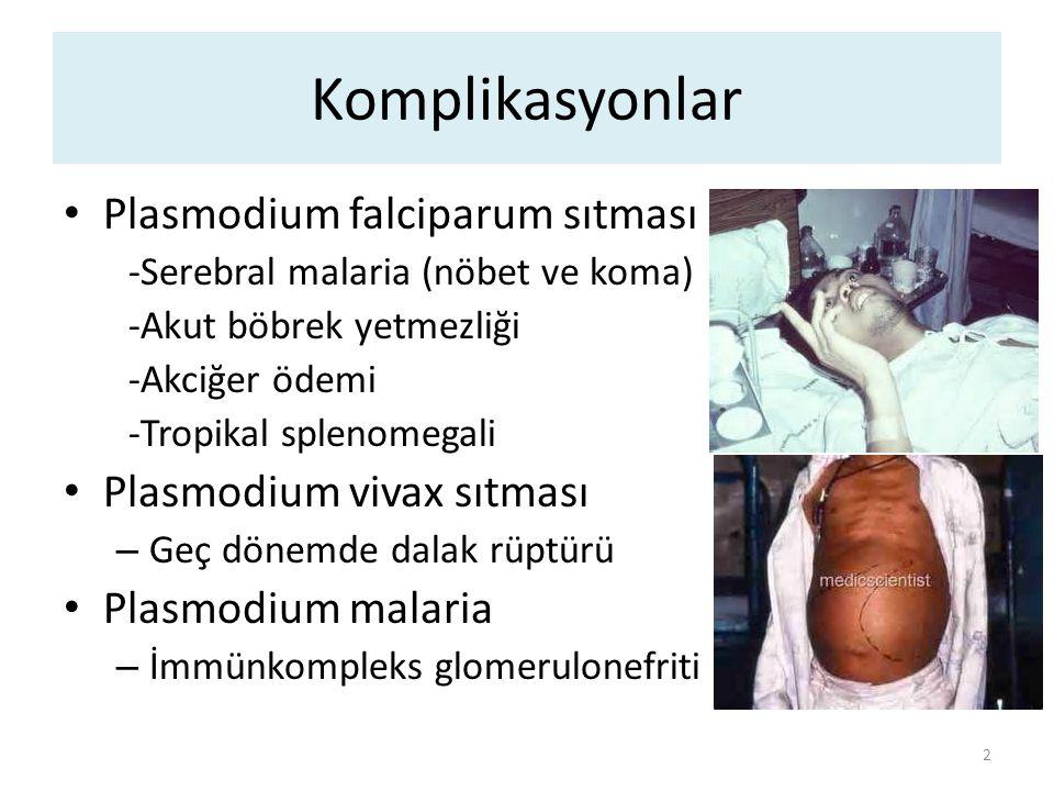 Plasmodium türlerinde özellikler 3 FalciparumVivaxOvaleMalaria Gametosit Muz şeklinde (tanı koydurucu) yuvarlak Eritrositler Her yaştan eritrosit Normal çapta eritrosit Membranda çıkıntılar Maurer lekeleri Genç eritrositler Eritrositler büyür, şekilleri bozulur Schüffner lekeleri Genç eritrositler Eritrositler büyür, şekilleri bozulur Schüffner lekeleri Yaşlı eritrositler Eritrositler küçük- normal Ziemann tanecikleri İnkübasyon 10-14 gün12-18 gün 18-40 gün (yıllar) Ataklar 36-48 saat48 saat 72 saat Relaps YokHipnozoitler tedavi edilmezse ilk 6 ay sık Yok Diğer En ciddi sıtma şekli Ölümcül Türkiyede yerli olgularda en sık Transfüzyon ilişkili sıtmada en sık