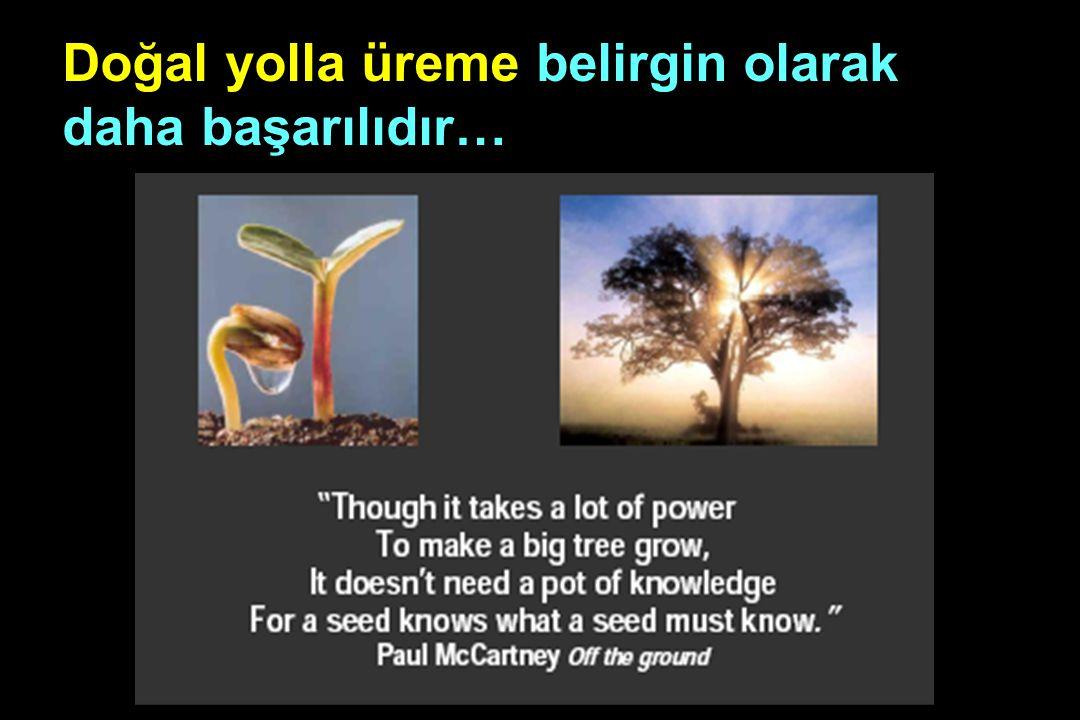 Doğal yolla üreme belirgin olarak daha başarılıdır… (