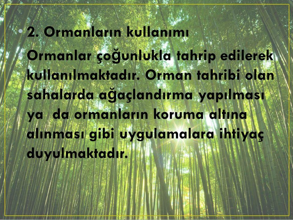 2. Ormanların kullanımı Ormanlar ço ğ unlukla tahrip edilerek kullanılmaktadır. Orman tahribi olan sahalarda a ğ açlandırma yapılması ya da ormanların