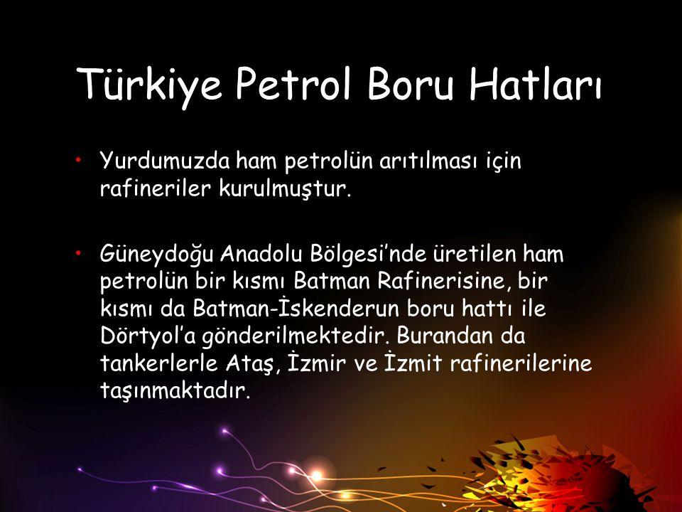 Türkiye Petrol Boru Hatları Yurdumuzda ham petrolün arıtılması için rafineriler kurulmuştur. Güneydoğu Anadolu Bölgesi'nde üretilen ham petrolün bir k