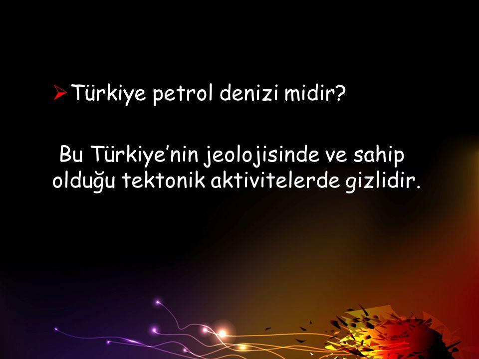  Türkiye petrol denizi midir? Bu Türkiye'nin jeolojisinde ve sahip olduğu tektonik aktivitelerde gizlidir.