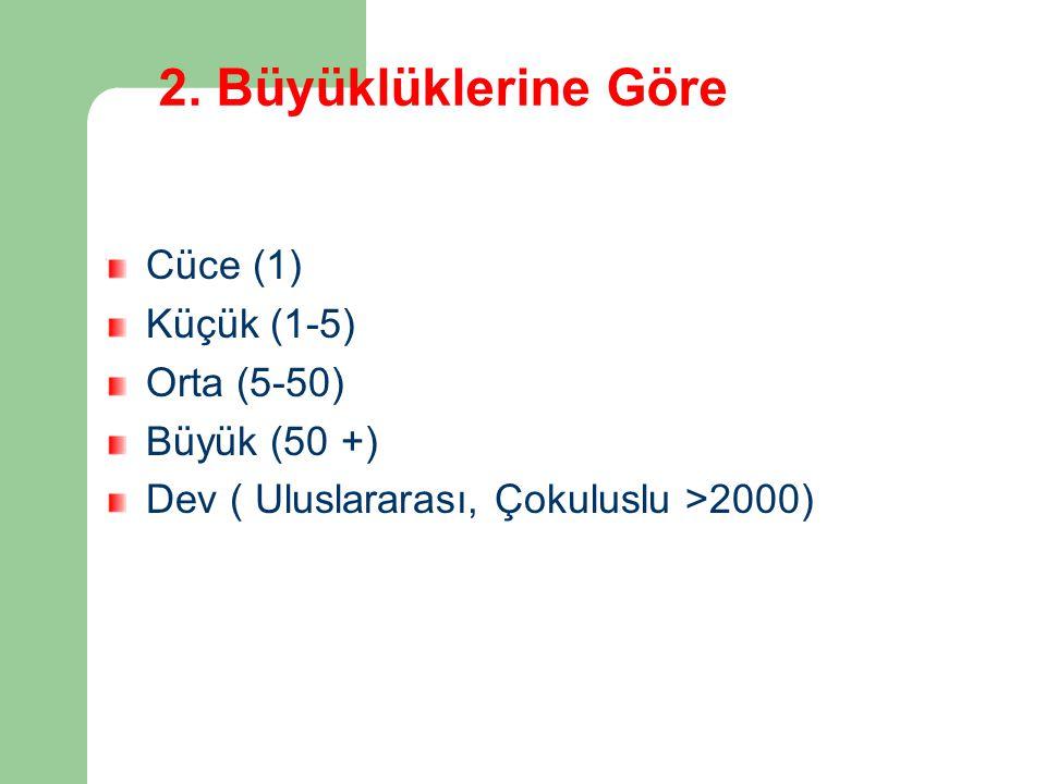 2. Büyüklüklerine Göre Cüce (1) Küçük (1-5) Orta (5-50) Büyük (50 +) Dev ( Uluslararası, Çokuluslu >2000)