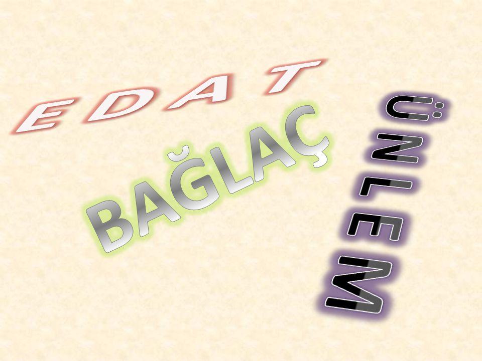 6) DE (DA) : Eş görevli kelimeleri,kelime gruplarını ve cümleleri ''dahi,bile,üstelik,hatta'' anlamlarıyla birbirine bağlar.