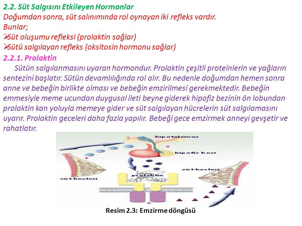 2.2. Süt Salgısını Etkileyen Hormonlar Doğumdan sonra, süt salınımında rol oynayan iki refleks vardır. Bunlar;  Süt oluşumu refleksi (prolaktin sağla