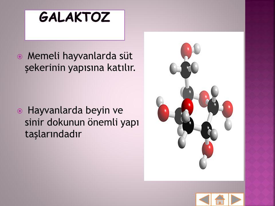  Bu 3 monosakkaritin kapalı formülleri aynı iken özellikleri aynı olmaktadır?