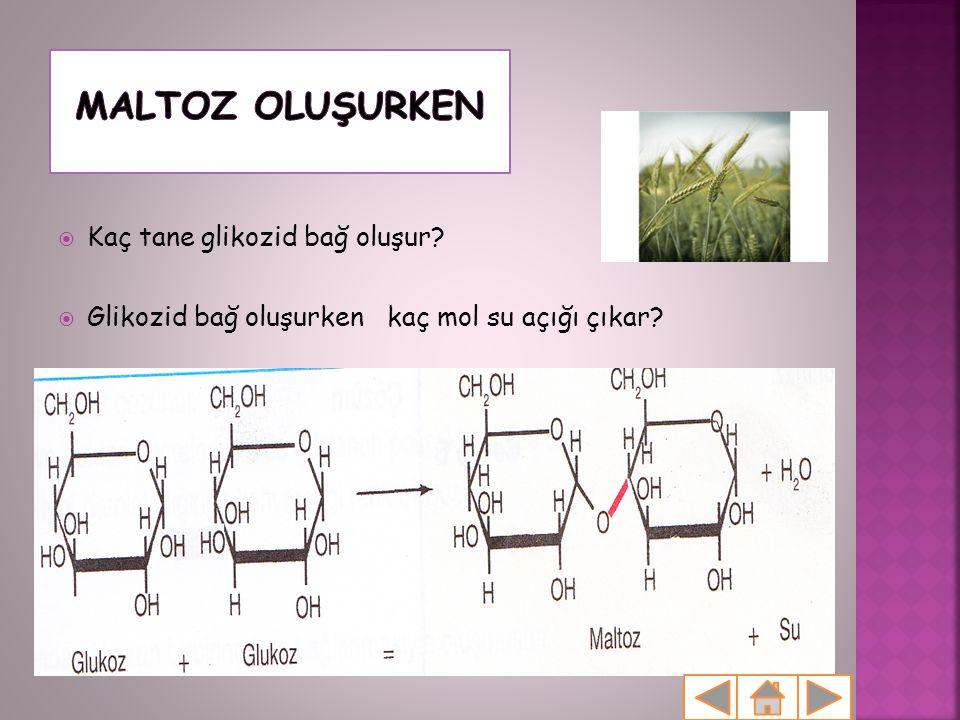  Kaç tane glikozid bağ oluşur?  Glikozid bağ oluşurken kaç mol su açığı çıkar?