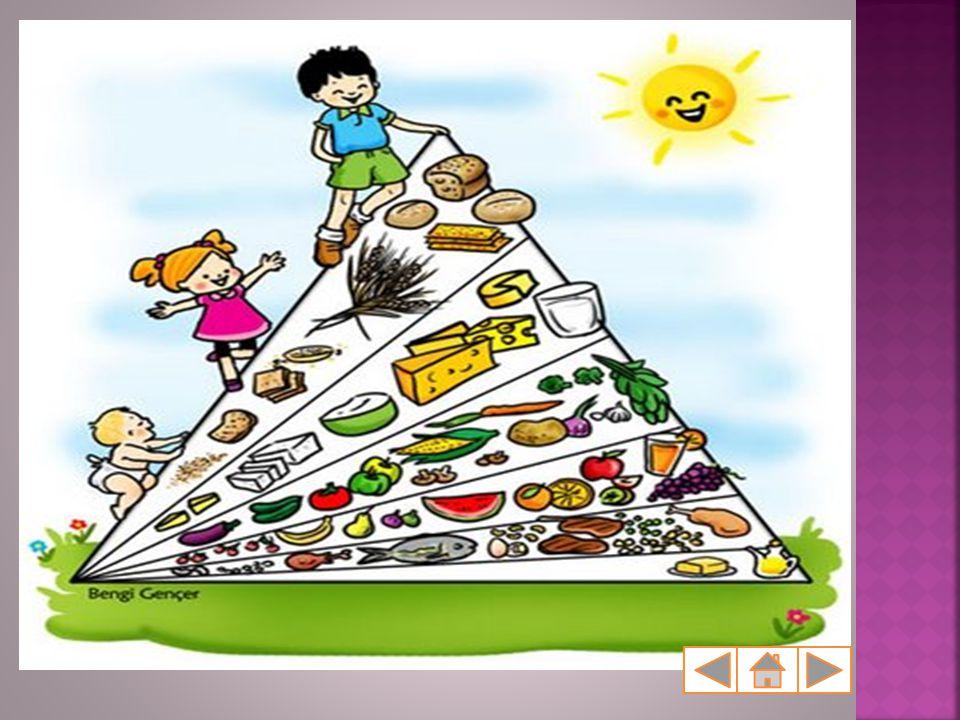  Sayılan tüm besin maddelerini 3 grup altında toplayabiliriz. KARBONHİDRATLAR YAĞLAR PROTEİNLER