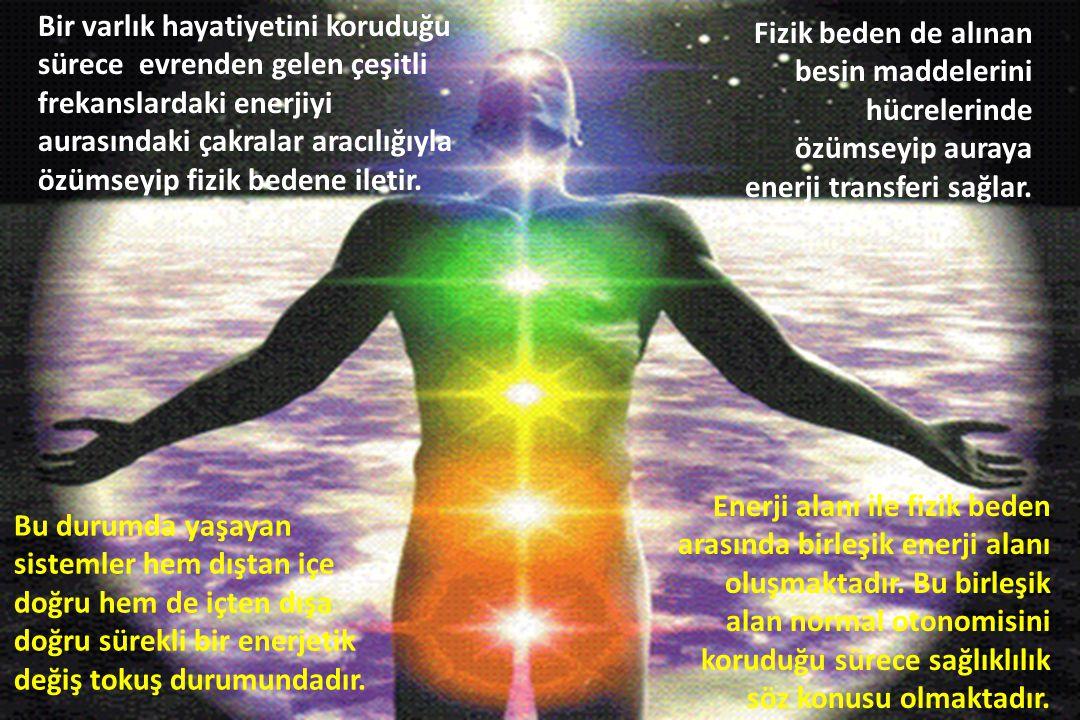 Bir varlık hayatiyetini koruduğu sürece evrenden gelen çeşitli frekanslardaki enerjiyi aurasındaki çakralar aracılığıyla özümseyip fizik bedene iletir.