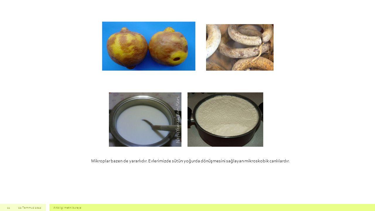 22 Temmuz 2012Altbilgi metni buraya11 Mikroplar bazen de yararlıdır. Evlerimizde sütün yoğurda dönüşmesini sağlayan mikroskobik canlılardır.