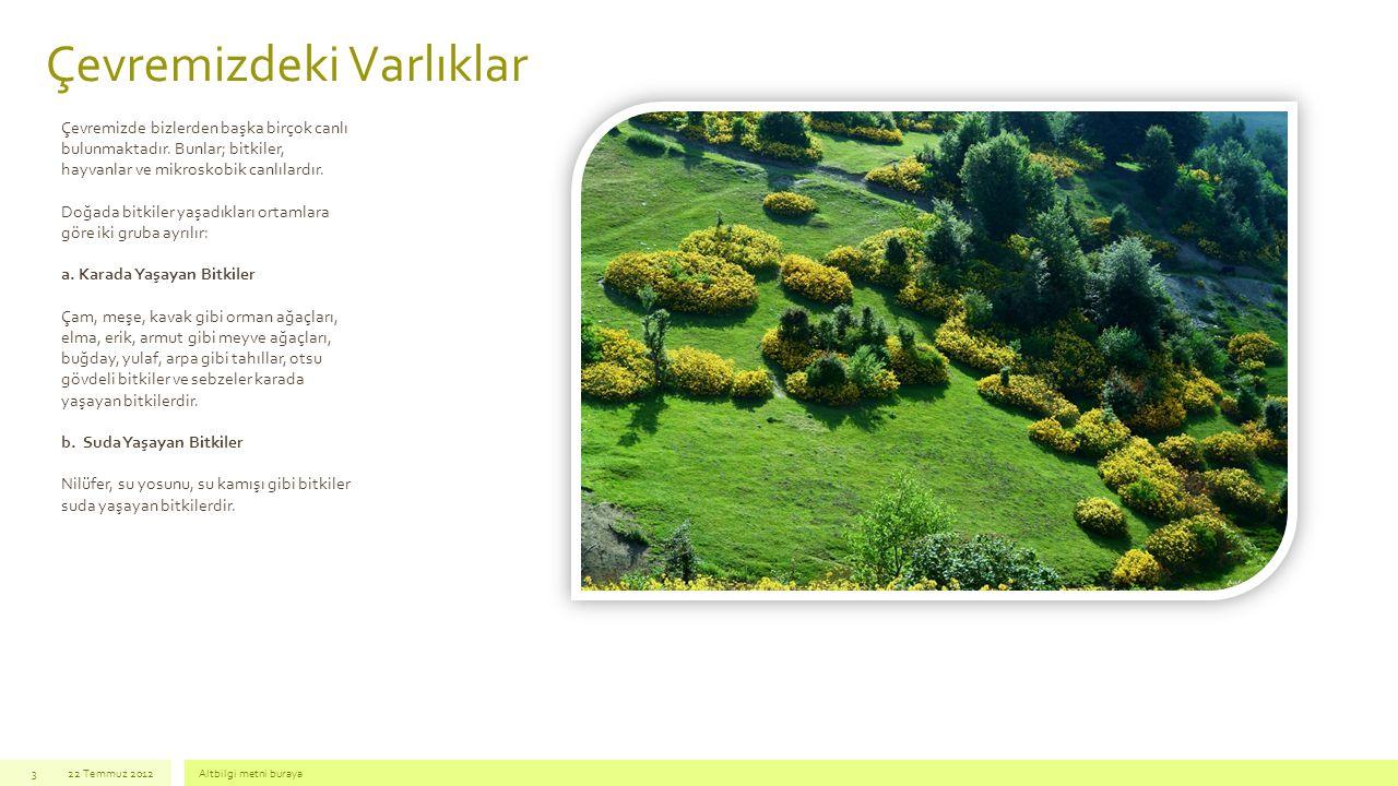 Çevremizdeki Varlıklar 22 Temmuz 2012Altbilgi metni buraya3 Çevremizde bizlerden başka birçok canlı bulunmaktadır. Bunlar; bitkiler, hayvanlar ve mikr