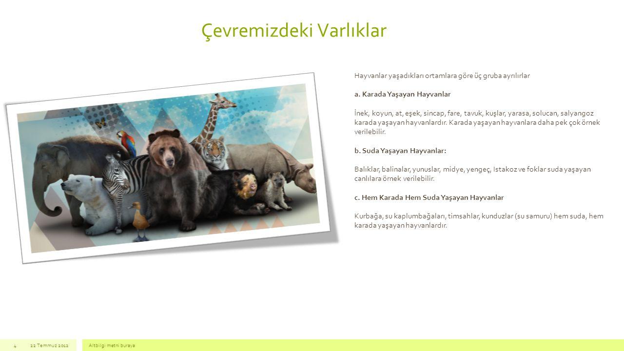 Çevremizdeki Varlıklar 22 Temmuz 2012Altbilgi metni buraya4 Hayvanlar yaşadıkları ortamlara göre üç gruba ayrılırlar a. Karada Yaşayan Hayvanlar İnek,