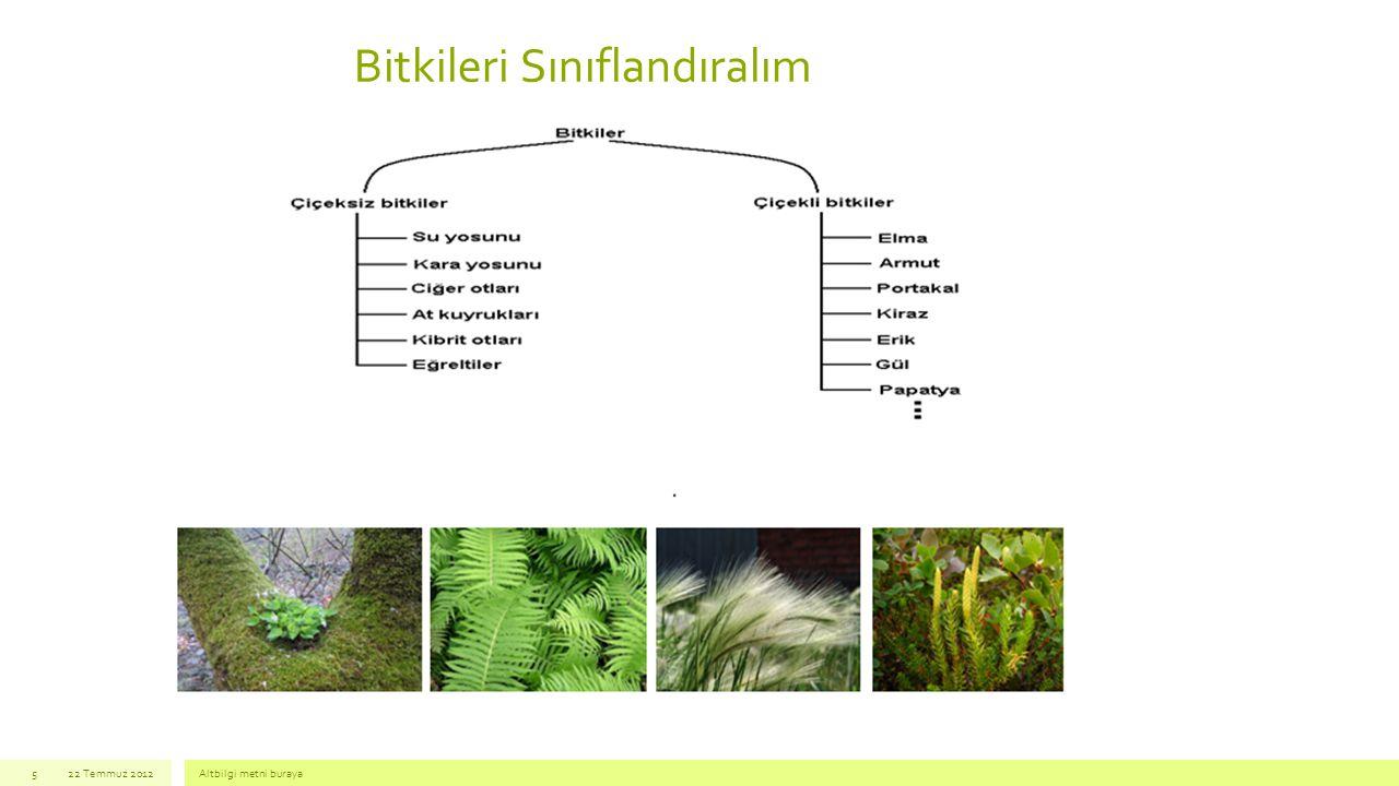 Bitkileri Sınıflandıralım 22 Temmuz 2012Altbilgi metni buraya5