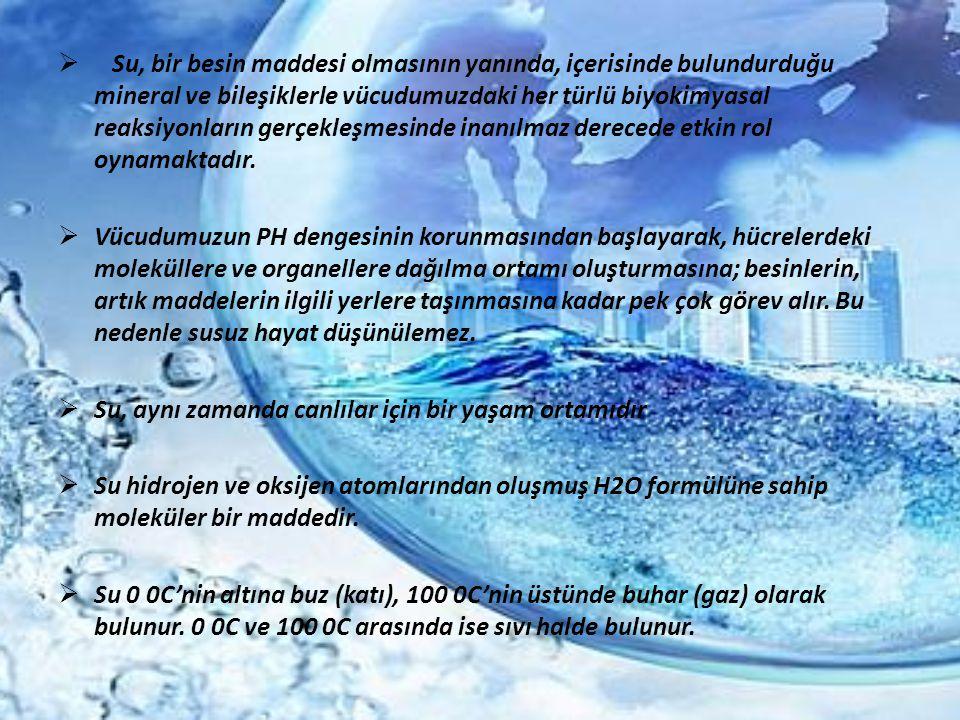  Su, bir besin maddesi olmasının yanında, içerisinde bulundurduğu mineral ve bileşiklerle vücudumuzdaki her türlü biyokimyasal reaksiyonların gerçekl