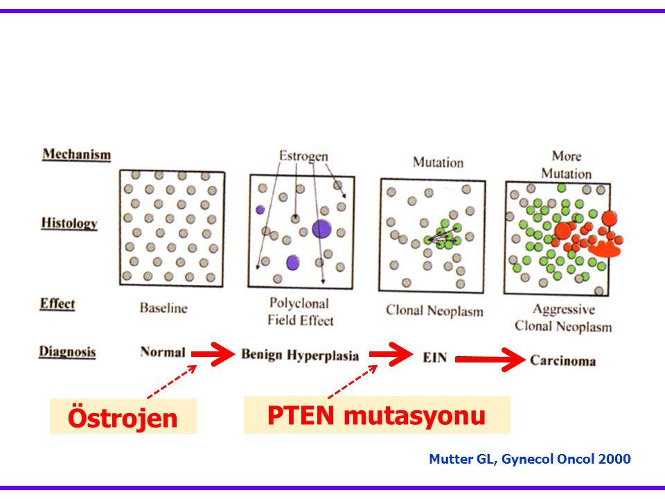 Mutter GL, Gynecol Oncol 2000 Östrojen PTEN mutasyonu