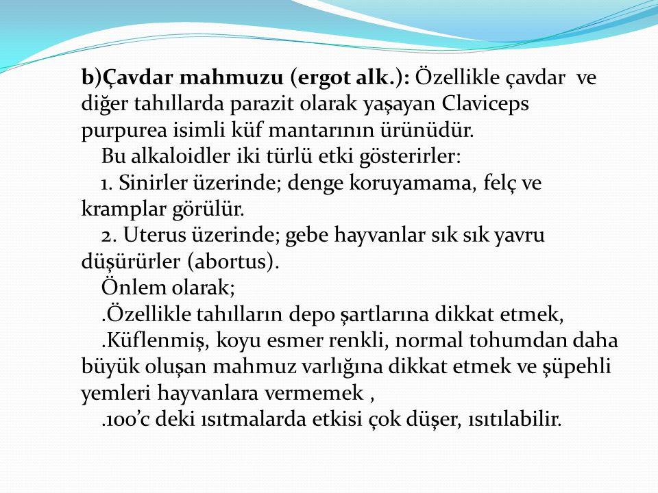 b)Çavdar mahmuzu (ergot alk.): Özellikle çavdar ve diğer tahıllarda parazit olarak yaşayan Claviceps purpurea isimli küf mantarının ürünüdür.