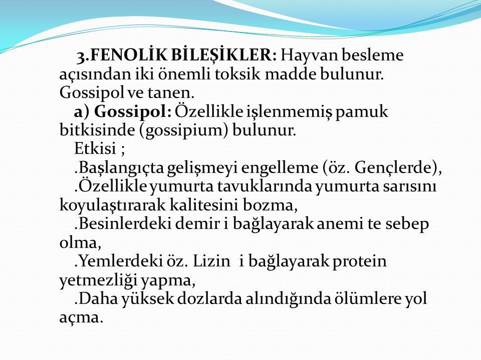 3.FENOLİK BİLEŞİKLER: Hayvan besleme açısından iki önemli toksik madde bulunur. Gossipol ve tanen. a) Gossipol: Özellikle işlenmemiş pamuk bitkisinde