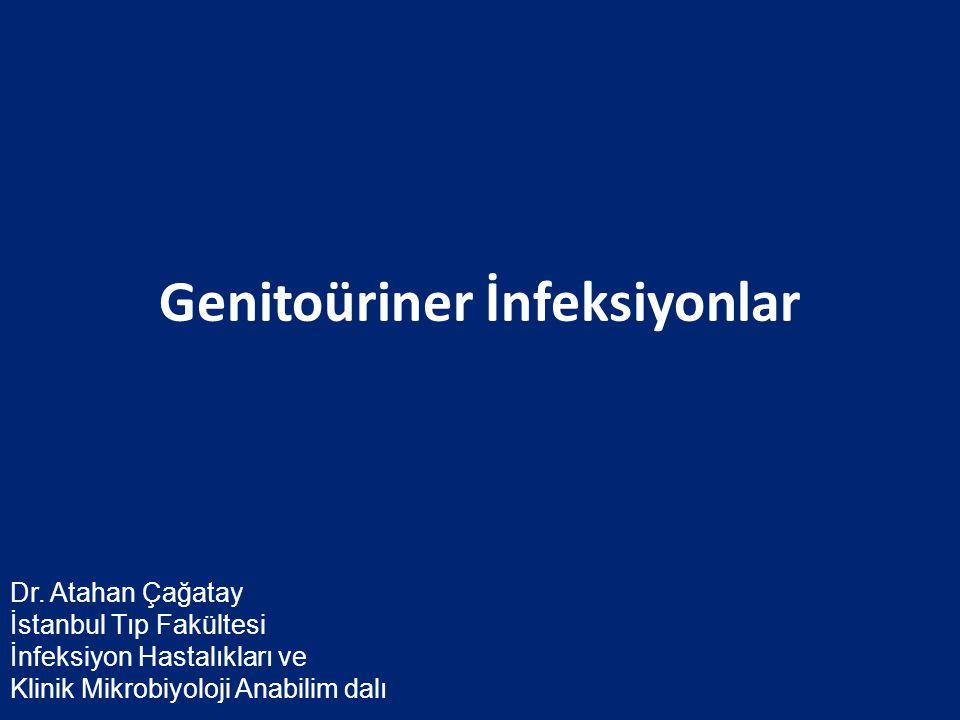 Genitoüriner İnfeksiyonlar Dr. Atahan Çağatay İstanbul Tıp Fakültesi İnfeksiyon Hastalıkları ve Klinik Mikrobiyoloji Anabilim dalı