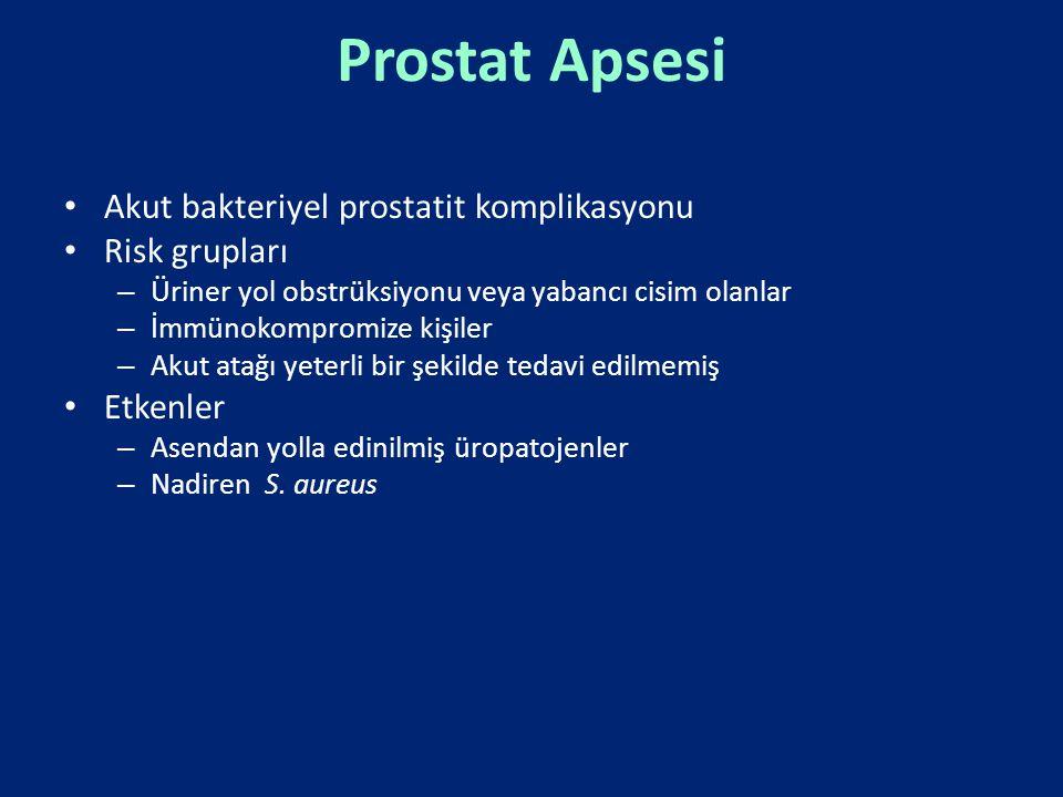 Prostat Apsesi Akut bakteriyel prostatit komplikasyonu Risk grupları – Üriner yol obstrüksiyonu veya yabancı cisim olanlar – İmmünokompromize kişiler