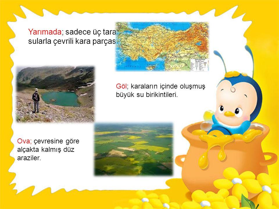 Dağ; çevresine göre daha yüksek olan kaya kütleleridir. Akarsu; yeraltında veya yeryüzünde akış halindeki sular. Orman; ağaç toplulukları. Ada; etrafı